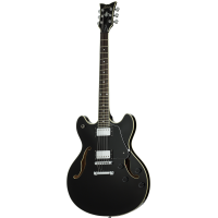 Электрогитара (полуакустическая) Schecter CORSAIR TOM